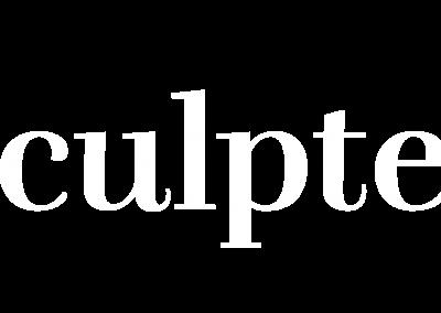 Sculpted_Steel_Lockup_Inv_Artboard 3xxhdpi